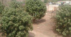 Villa avec piscine a vendre a Banankabougou