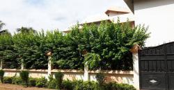 Location villa Cité du Niger Bamako avec piscine