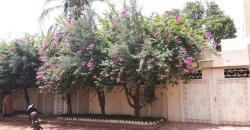 Villa meuble a louer a Bamako Hippodrome avec piscine