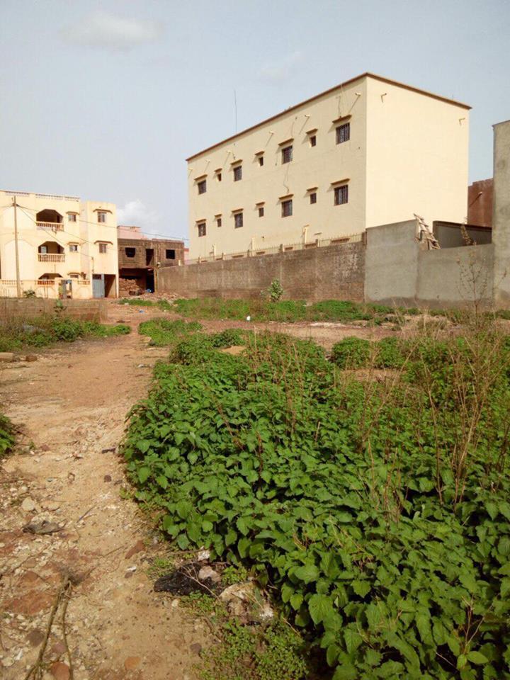 vente terrain baco djicoroni baco djicoroni golf bamako terrain a vendre au. Black Bedroom Furniture Sets. Home Design Ideas