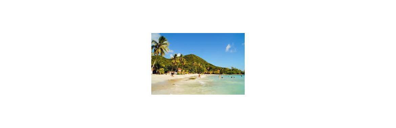 Visiter la Martinique en voiture