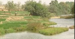 A louer : terrain plat à Bamako en bordure du fleuve et du marigot