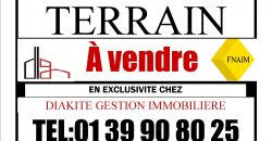 Terrains à vendre à Kabala Bamako, Idéal investisseurs ou groupes