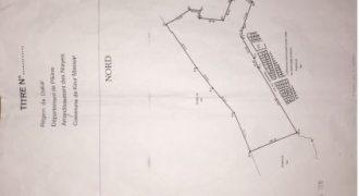 Terrain 13.6 hectares à collé a la cité Apix Dakar/ Senegal