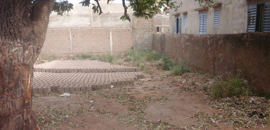 Terrain de 300 m2 en Titre Foncier à Dorodougou