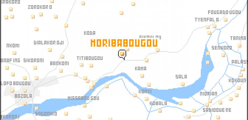 Terrain de 200m2 en TF à Moribabougou