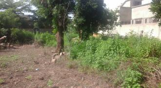 Terrain d'habitation en TF de 300m2 à vendre à Sébénikoro Sema 2